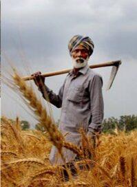 पीएम किसान योजना के तहत हितग्राहियों को लाभ वितरण 25 दिसंबर को.
