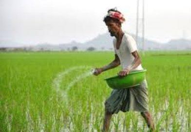 कोरोना दौर में डीएपी खाद के दाम बढ़ाने का कांग्रेस ने किया विरोध, कहा सरकार फैसला वापस ले