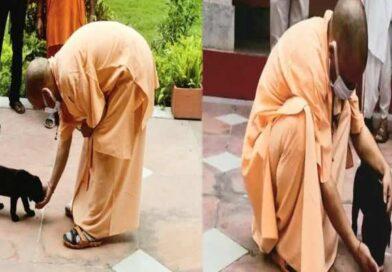 CM योगी को देखते ही दौड़ा चला आया `गुल्लू`, लिपट कर करने लगा अठखेलियां